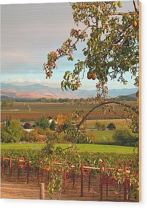 Wood Print featuring the photograph My Favorite Valley View by Brooks Garten Hauschild