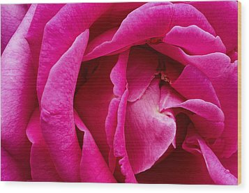 My Last Rose Wood Print by Kenneth Feliciano