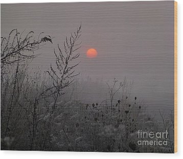 My Misty Morning Wood Print