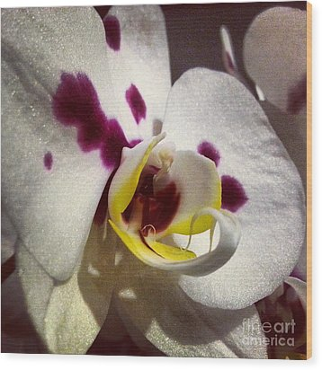 My Orchid Wood Print by Heather L Wright