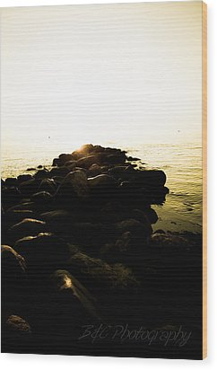 My Stepping Stones 2 Wood Print by BandC  Photography