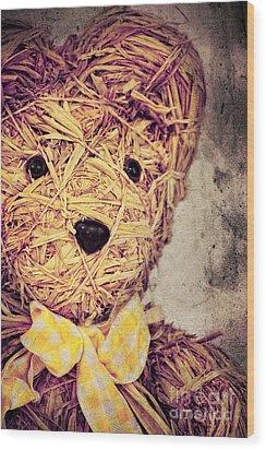 My Teddy Bear Wood Print by Angela Doelling AD DESIGN Photo and PhotoArt