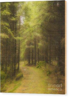 My Way Wood Print