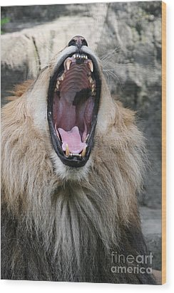 My What Big Teeth You Have Wood Print