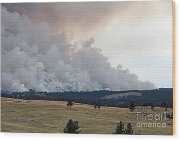 Myrtle Fire West Of Wind Cave National Park Wood Print