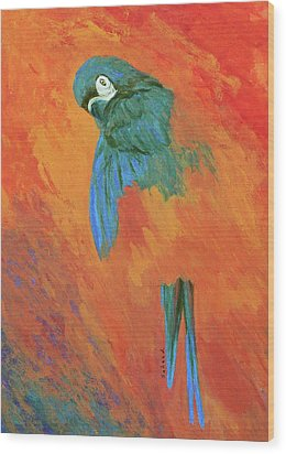 Wood Print featuring the painting Mysterious Macaw by Margaret Saheed