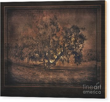 Mysterious Mesquite Wood Print by Erika Weber