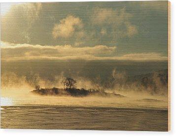 Mystery Island Wood Print by Randi Grace Nilsberg