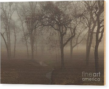Mystic Forest 004 Wood Print by Robert ONeil