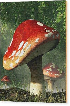 Mystic Mushroom Wood Print by Daniel Eskridge