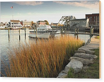Mystic Seaport Ct Wood Print by Gail Maloney
