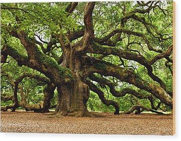 Mystical Angel Oak Tree Wood Print by Louis Dallara