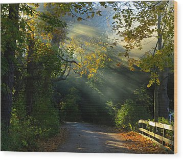 Mystical Wood Print by Dianne Cowen