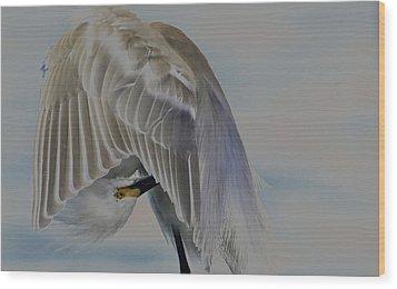 Mystical Egret Wood Print