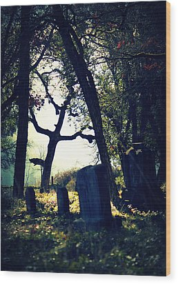 Wood Print featuring the photograph Mystical Fantasies by Melanie Lankford Photography