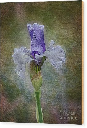 Wood Print featuring the photograph Mystical Iris by Vicki DeVico