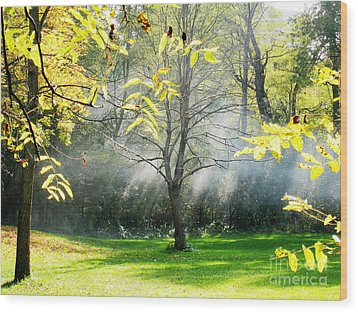 Wood Print featuring the photograph Mystical Parkland by Nina Silver
