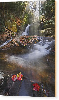 Mystical Pool Wood Print by Debra and Dave Vanderlaan