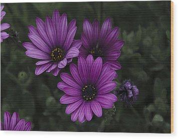 Mystical Purple Wood Print by Penny Lisowski