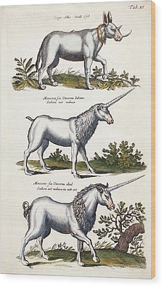 Mythical Horned Beasts Wood Print