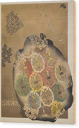 Mythical Turtle  Wood Print