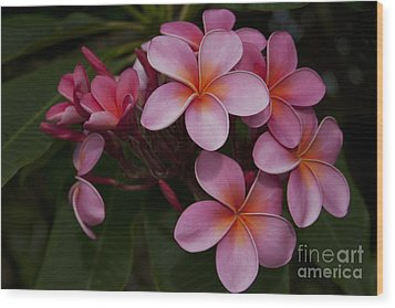 Na Lei Pua Melia O Wailua - Pink Tropical Plumeria Hawaii Wood Print