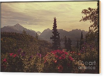 Wood Print featuring the photograph Nadine's View by J Ferwerda