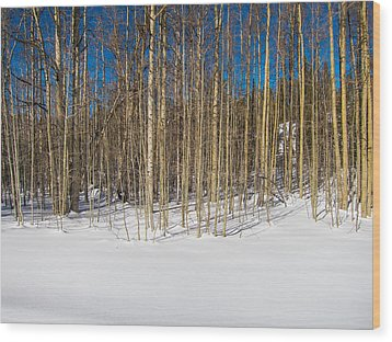 Naked Wilderness Wood Print by Mike Lee