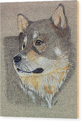 Wood Print featuring the drawing Nanook by Stephanie Grant
