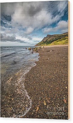 Nant Gwrtheyrn Shore Wood Print by Adrian Evans