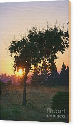 Wood Print featuring the photograph Napa Moment by Ellen Cotton