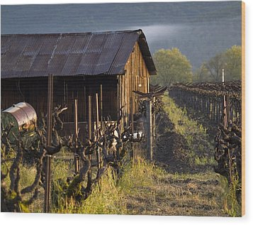 Napa Morning Wood Print by Bill Gallagher