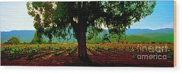 Wood Print featuring the photograph Napa Valley Ingenook Winery Roadside by Tom Jelen