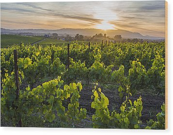 Napa Valley Sunset  Wood Print