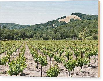 Napa Vineyard With Hills Wood Print by Shane Kelly