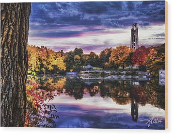 Naperville In Autumn Wood Print
