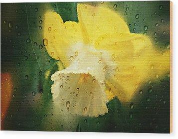 Narcissi Wood Print