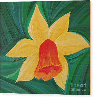 Narcissus Diva By Jrr Wood Print by First Star Art