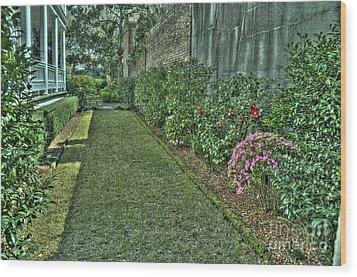 Narrow Urban Garden Wood Print