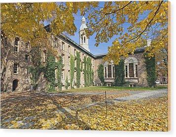 Nassau Hall With Fall Foliage Wood Print by George Oze