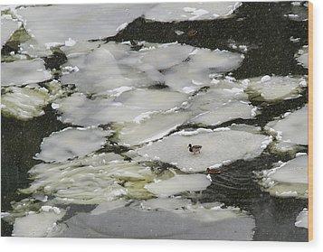 Nasty Weather - Featured 3 Wood Print by Alexander Senin