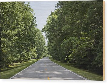 Natchez Trace Parkway In Cobert County Wood Print by Carol M Highsmith
