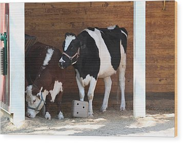 National Zoo - Cow - 01133 Wood Print by DC Photographer