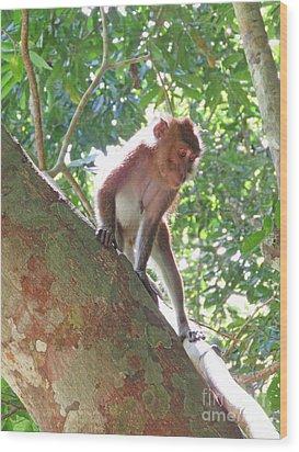 Native Palawan Monkey Wood Print