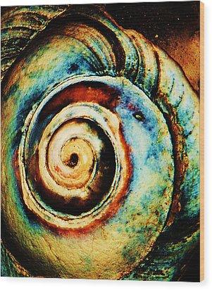 Native Spiral Wood Print