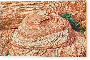Natural Abstract Canyon De Chelly Wood Print by Bob and Nadine Johnston