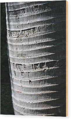 Natural Art Wood Print by Karen Nicholson