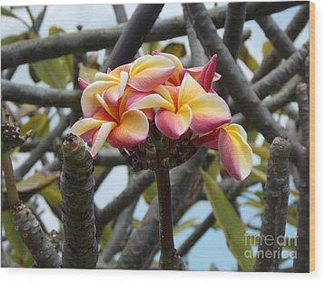 Natural Bouquet  Wood Print by Mindy Sue Werth