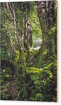 Natural Emeralds. I Wicklow. Ireland Wood Print by Jenny Rainbow