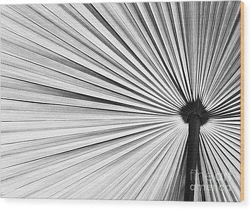 Natural Expolsion Wood Print by Sabrina L Ryan